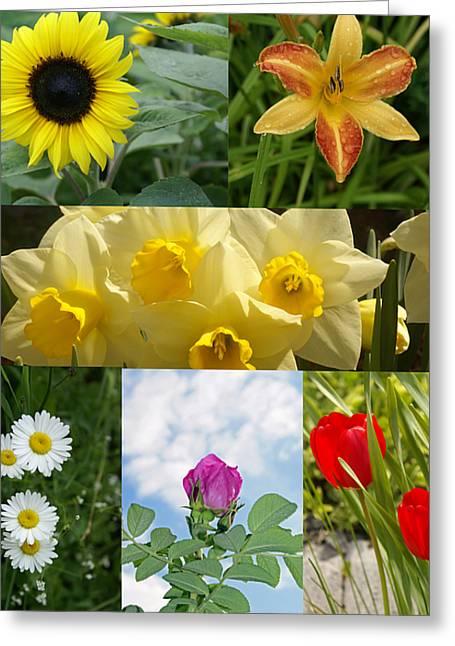 Flower Colage Greeting Card by Lisa Hebert