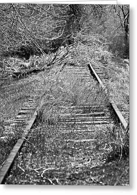 Greeting Card featuring the photograph Ghost Rail by Juls Adams