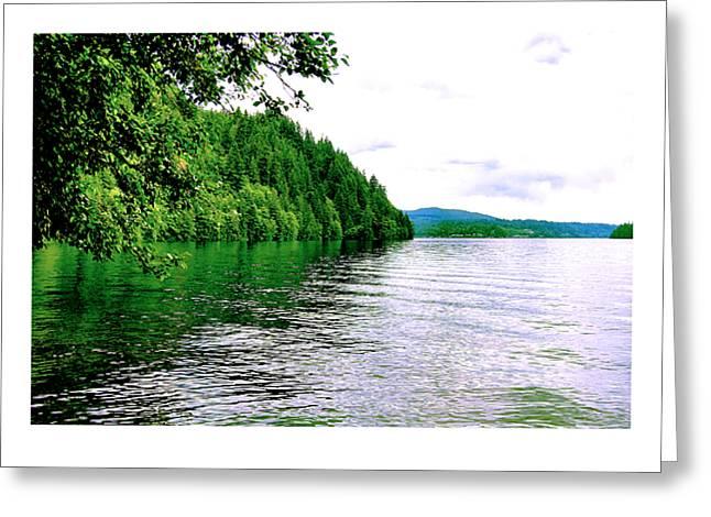 Green Lake Greeting Card by J D Banks