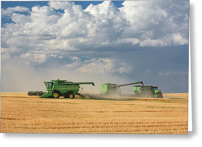 Harvest Clouds Greeting Card by Todd Klassy