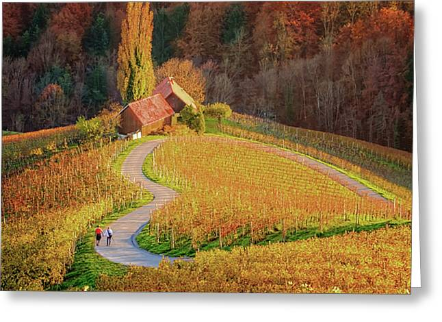 Heart Shaped Wine Road In Slovenia In Autumn, Herzerl Strasse Greeting Card