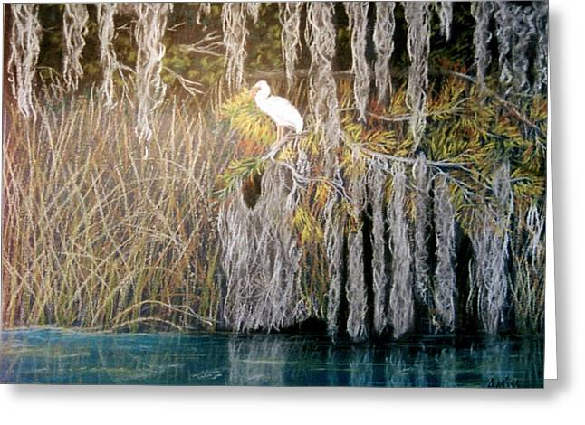 Greeting Card featuring the pastel Ibis At Wakulla Springs by Jan Amiss