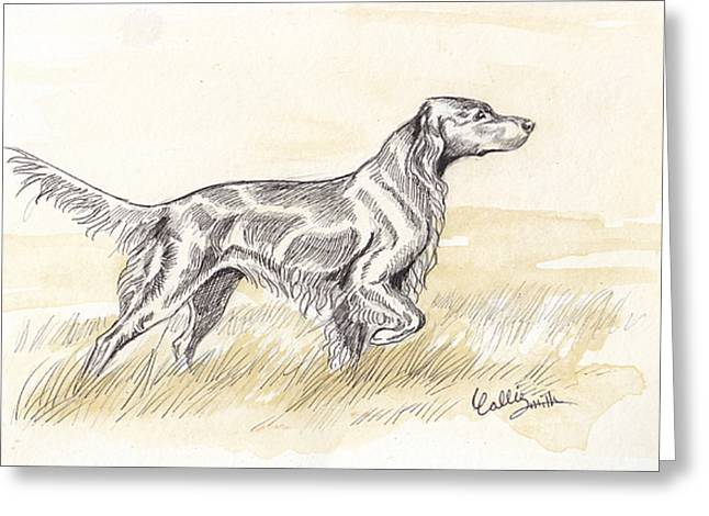 Irish Setter Sketch Greeting Card by Callie Smith