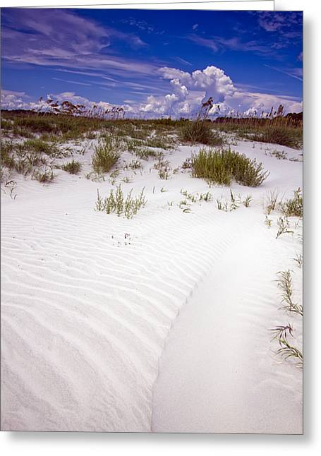 Kiawah Island Beachwalker Greeting Card by Dustin K Ryan