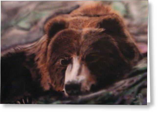 Let Sleeping Bears Lie Greeting Card by Frank  Bingo