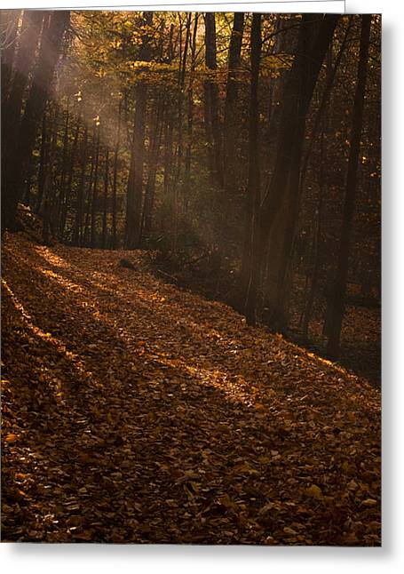 Light Breaking Thru Greeting Card by Andrew Soundarajan