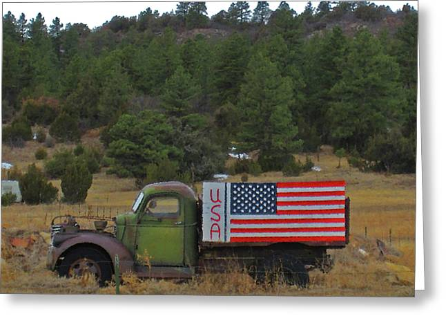 Love Usa Greeting Card by Tammy Sutherland