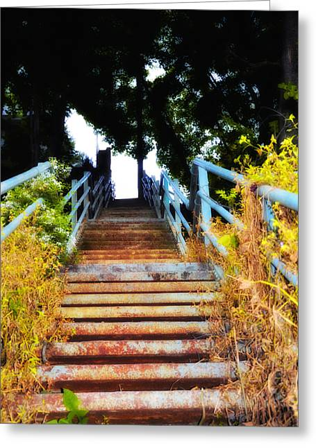 Manayunk Steps Greeting Card by Bill Cannon