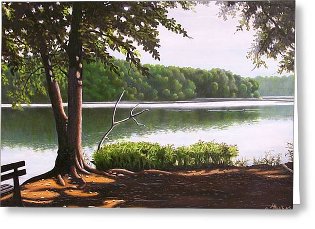 Morning At City Lake Park Greeting Card by Larry Hoskins