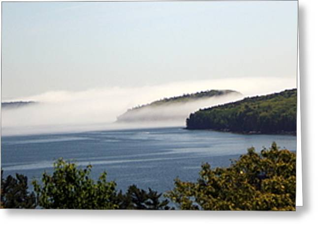 Greeting Card featuring the photograph Morning Mist In Acadia by Greg DeBeck