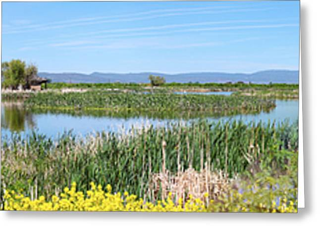 National Wildlife Preserve Marshes In Klamath Falls Oregon. Greeting Card by Gino Rigucci
