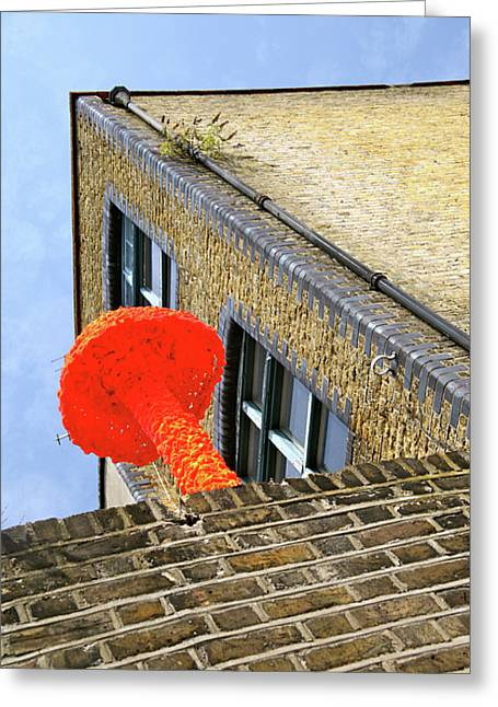 Greeting Card featuring the photograph No Mush Room Here by Jez C Self