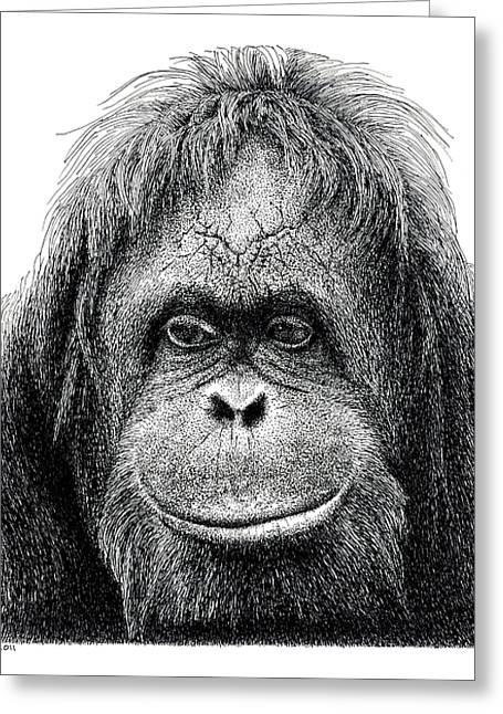 Orangutan Greeting Card by Scott Woyak
