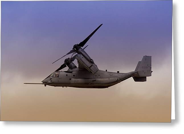 Osprey In Flight IIi Greeting Card
