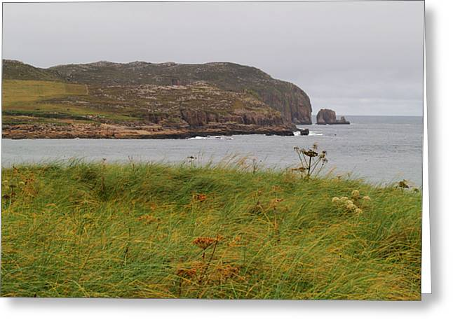 Owey Island Greeting Card