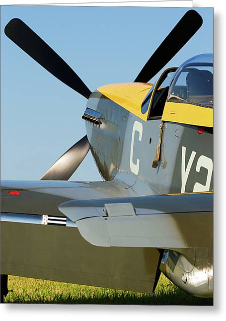 P51 Mustang Greeting Card
