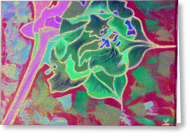 Pomegranate Flower Greeting Card by Loretta Nash