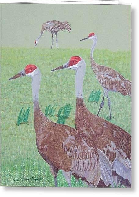 Red Heads Greeting Card