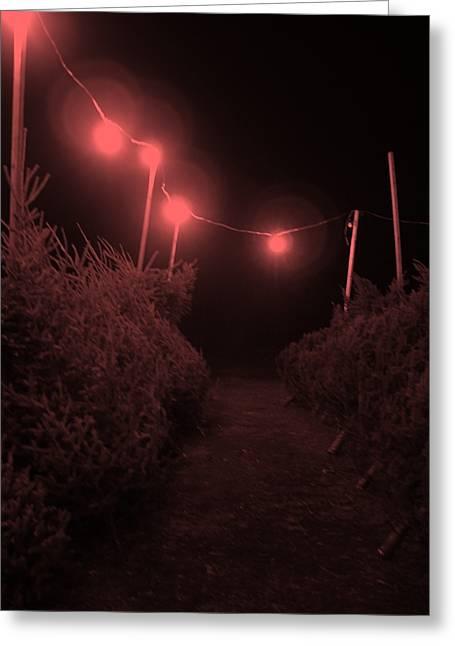 Red Night Greeting Card by John  Bichler