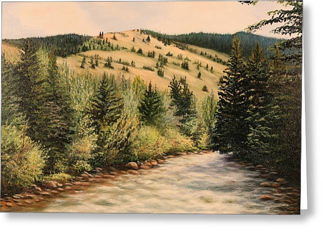 Rock Creek Greeting Card by Patti Gordon