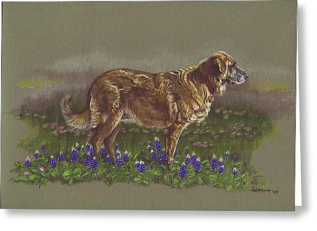 Sasha In The Bluebonnets - Leonberger Greeting Card