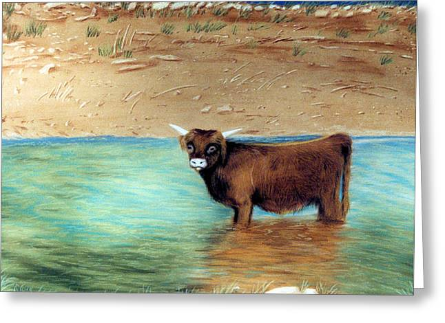 Greeting Card featuring the pastel Scottish Highland Bull by Jan Amiss