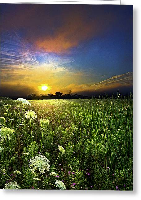 Scuppernong Greeting Card by Phil Koch