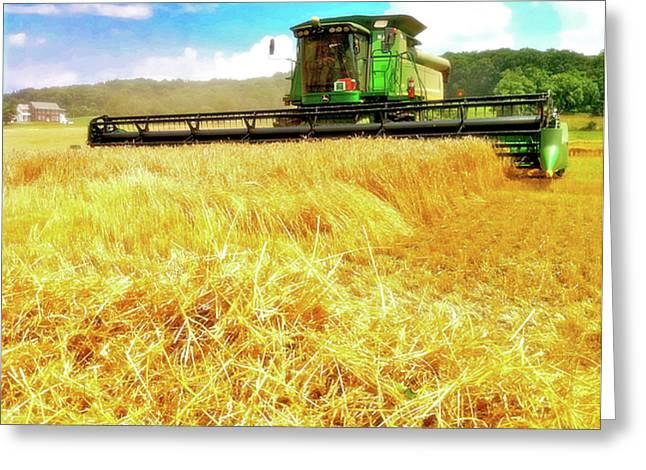 Summer Harvest Greeting Card by Kevyn Bashore