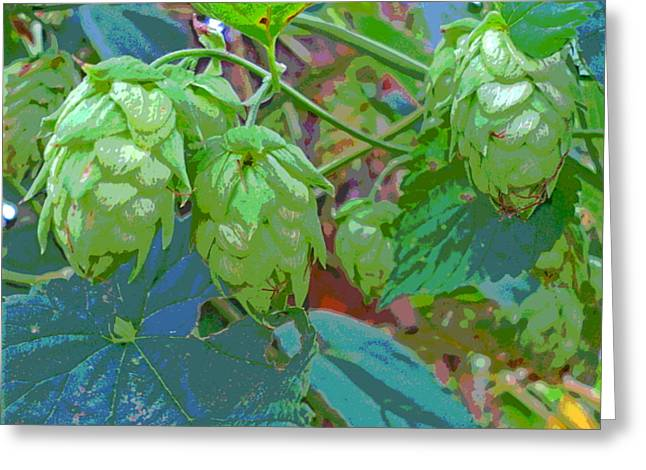 Sun Dappled Hops Vine Seed Cones Greeting Card by Padre Art