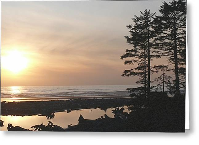 Sun Down At  Kalaloch Greeting Card by Terri Thompson