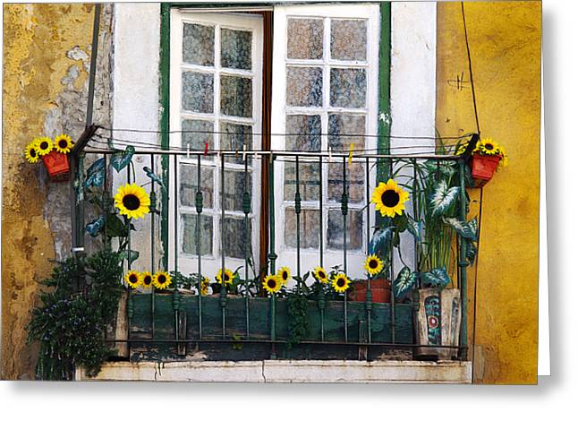 Sunflower Balcony Greeting Card by Carlos Caetano