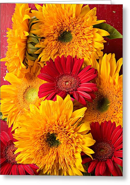 Sunflowers And Red Mums Greeting Card by Garry Gay