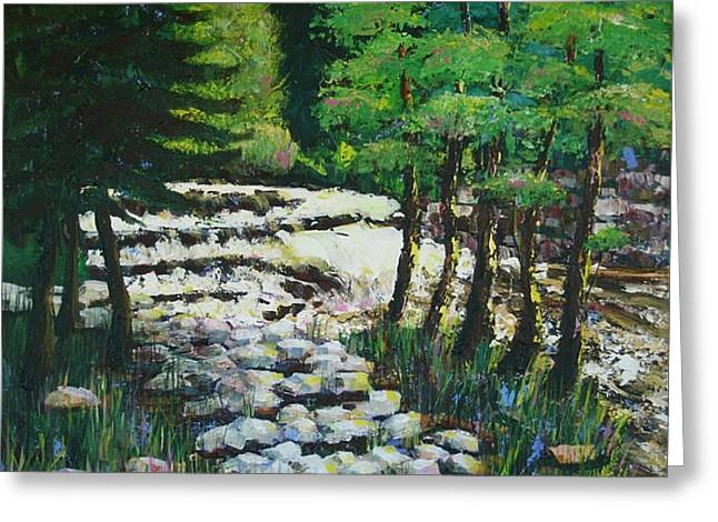 Sunlit Waterfall Greeting Card by Art Nomad Sandra  Hansen