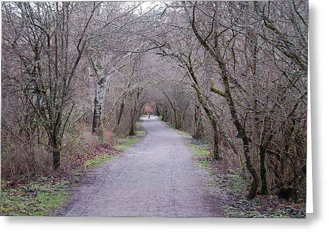 Trail Tunnel Greeting Card by J D Banks