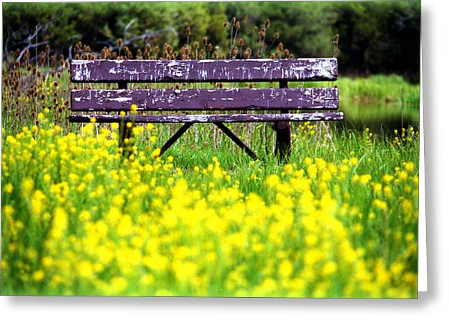 Wooden Bench Greeting Card by Emanuel Tanjala