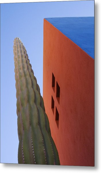 Cactus Against Colorful Walls Metal Print by Pixelchrome Inc