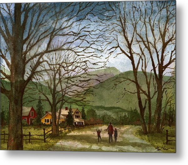 Country Lane  Metal Print
