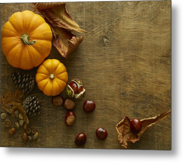 Autumn Still Life Metal Print by Science Photo Library