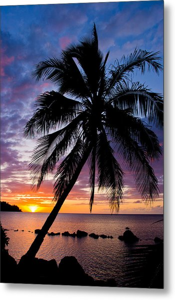 Anini Palm Metal Print