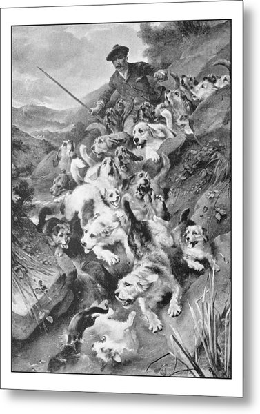 Antique Photo Of Paintings: Bolting The Otter Metal Print by Ilbusca