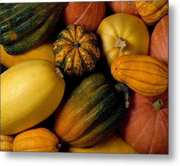 Assortment Of Squash Metal Print by Brand X Pictures