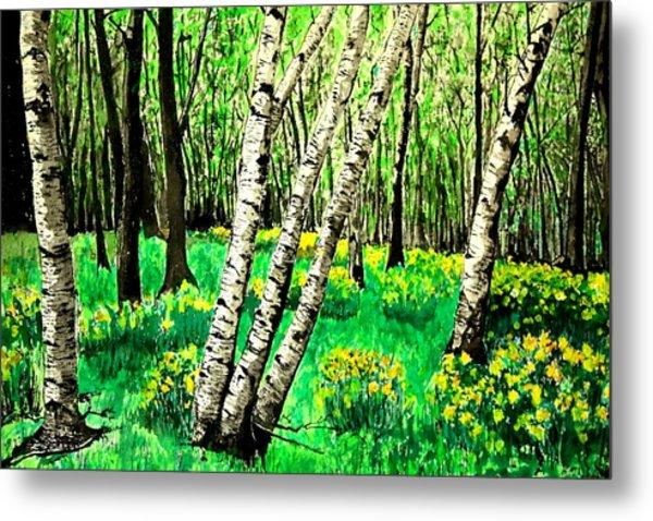 Birch Trees In Spring Metal Print
