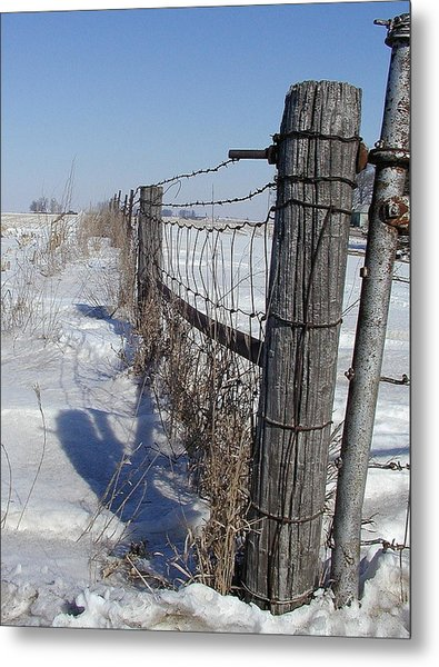 Checking The Fenceline Metal Print