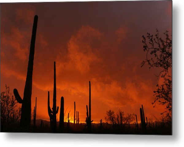 Embers Of The Day Metal Print by Justin  Curry
