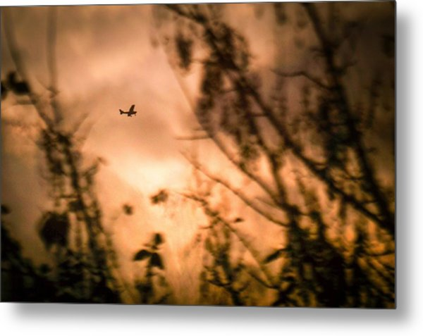 Low Angle View Of Silhouette Airplane And Trees Against Sky During Sunset Metal Print by Andres Ruffo / EyeEm