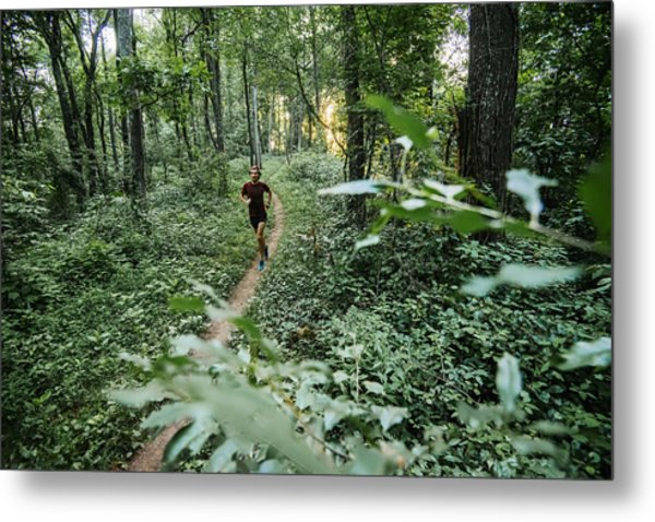 Man Jogging In Forest Along Mountain To Sea Trail, Asheville, North Carolina, Usa Metal Print by Andy Wickstrom / Aurora Photos
