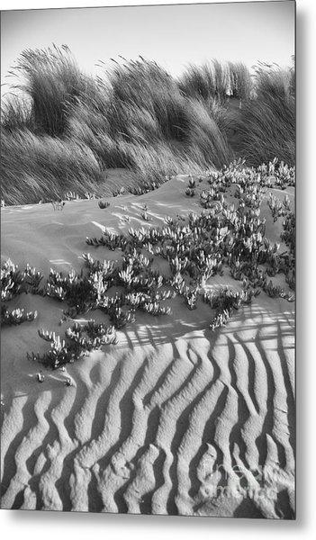 Morro Beach Textures Bw Metal Print