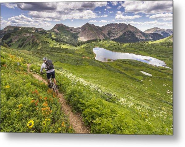 Mountain Biker On Green Trail Metal Print by Image Source RF/©Whit Richardson