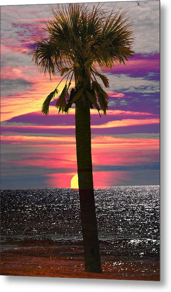 Palm Tree At Sunset Metal Print