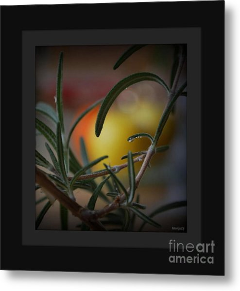 Photo For Your Soul... Metal Print